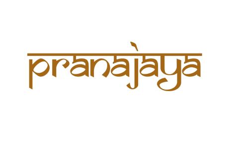 pranajaya Yogamatte Baumwolle